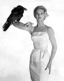 Мать актрисы Мелани Гриффит.  Муза Альфреда Хичкока.  Птицы (1963) - Мелани Дэниелз